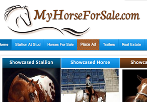 MyHorseForSale.com Website